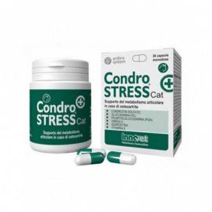 Condrostress Cat+ - Joint health complementary cat food