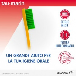 Toothbrush Manual Medium Magnum With Exchangeable Head
