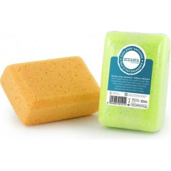 Sponge For The Body Blunt Soft And Delicate Cellulose